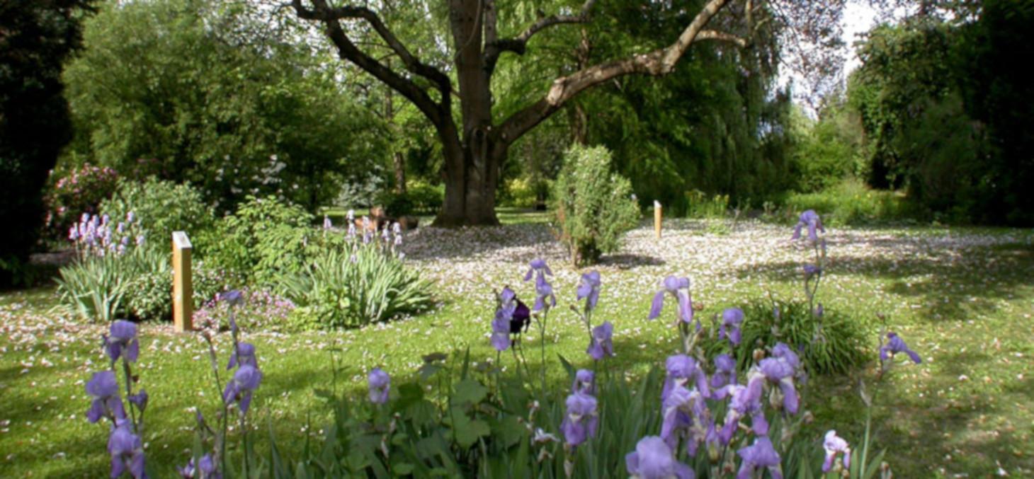 Arboretum Ruffier-Lanche © Station Alpine Joseph Fourier