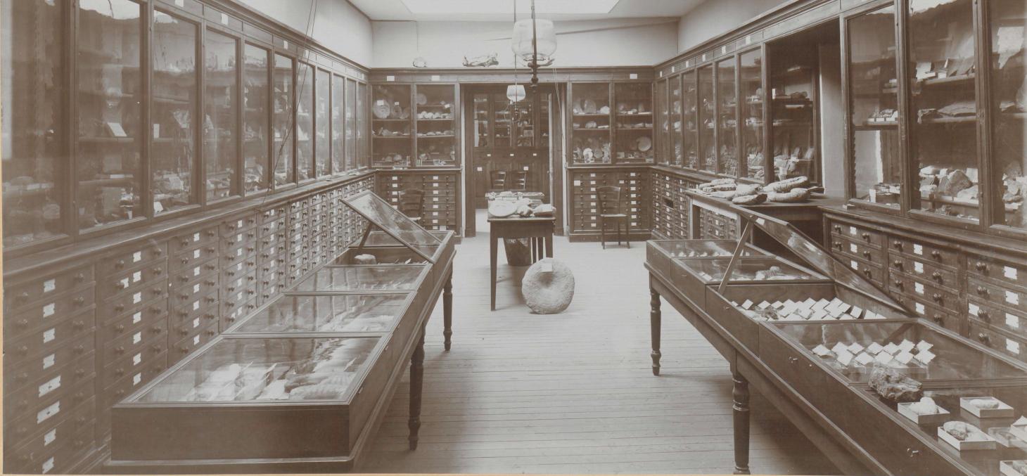 La collection de géologie à la fin du 19e siècle / Bibliothèques universitaires - SID Université Grenoble Alpes - Grenoble INP