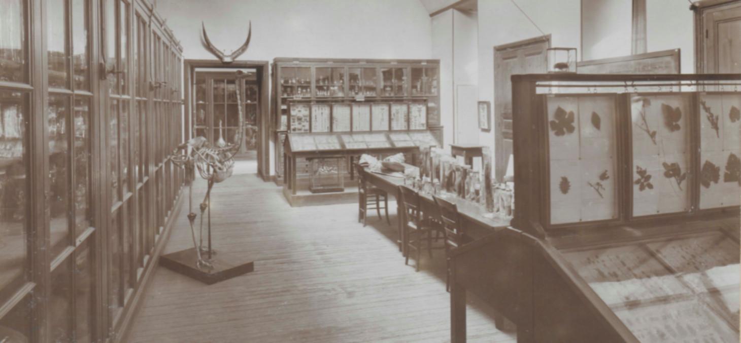 La collection de zoologie en 1900 - Bibliothèques universitaires - SID Université Grenoble Alpes - Grenoble INP